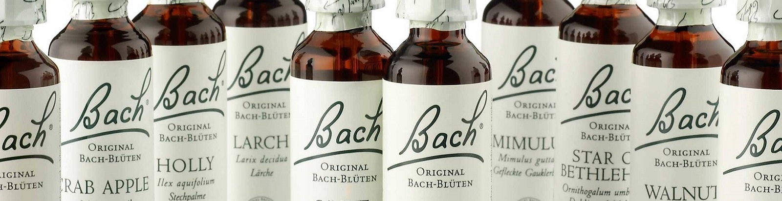 Original Bachblütentherapie